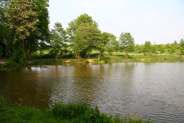 Oldmoor Pond, Strelley(1)_600