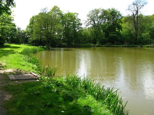 Oldmoor Pond, Strelley(2)_600