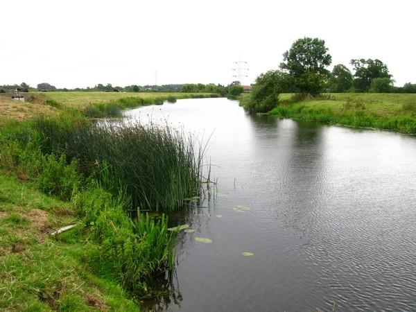 River Soar, Beebys Meadow_600