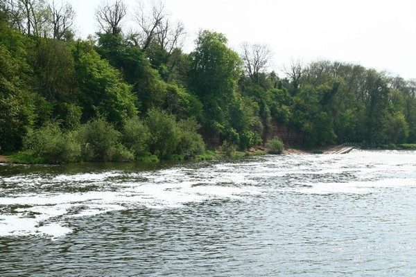 River Trent, East Bridgford_600