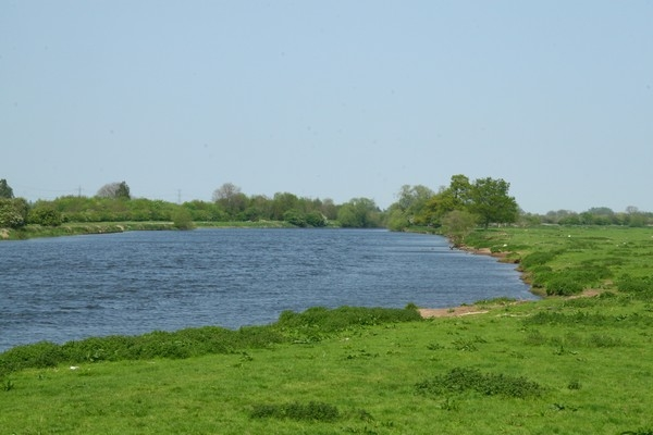 Shelford, Hamms Bridge_600