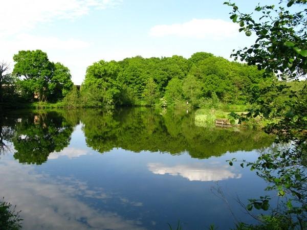 Sowbrook Lake(1)_600