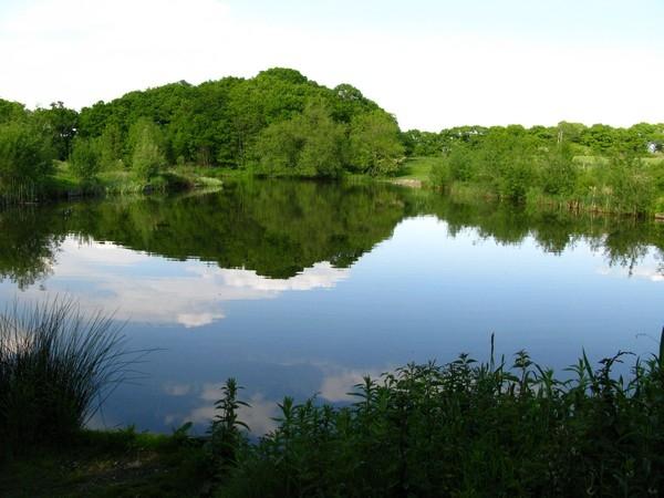 Sowbrook Lake(2)_600