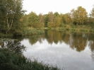 Bestwood No3 Pond_600