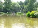 Strelley Pond 002_600