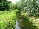 River Maun, Walesby_600