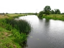 River Soar, Beebys Meadow_600