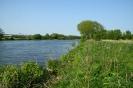 River Trent, Adbolton_600